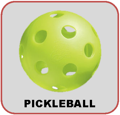 WEB ICON -PICK